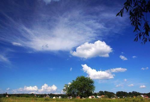 landscape summer sunny day