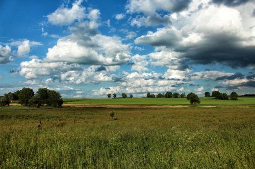 landscape meadow summer