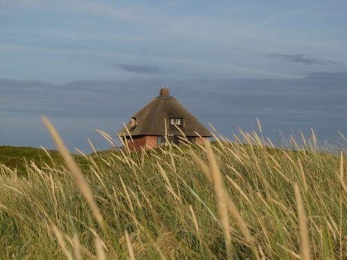 landscape dunes sylt