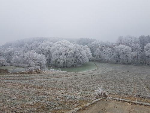 landscape hoarfrost frost