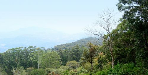 landscape scenery loolecondera