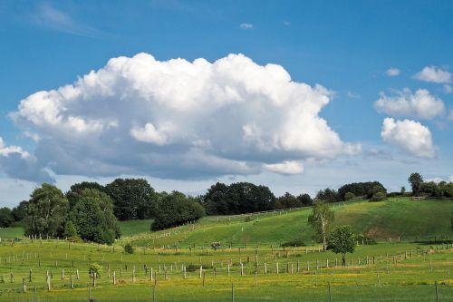 landscape field nature