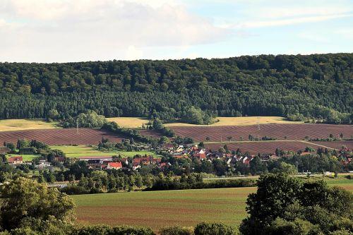 landscape fields forest