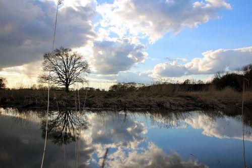 landscape lake mirroring
