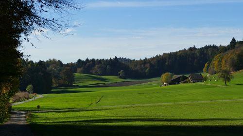 landscape farm fields
