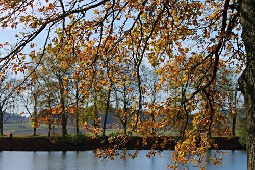 landscape autumn landscape lake