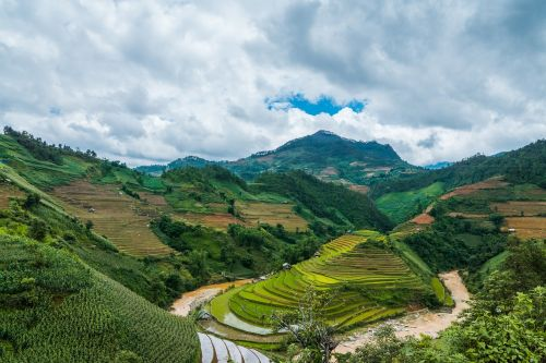 landscape mucangchai countryside