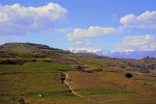 kraštovaizdis, gamta, panoraminis, dangus, kalnas, vynuogynai, monteforte, be honoraro mokesčio