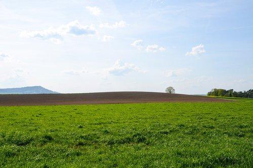 landscape  panorama  field