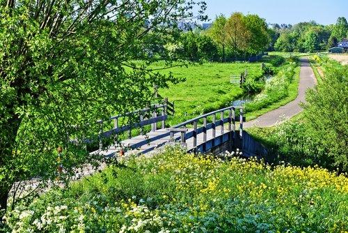 landscape  holland  dutch landscape