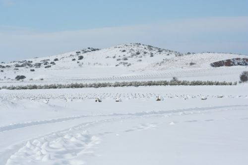 landscape castilla snow