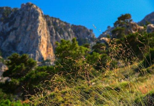 landscape  nature  rock