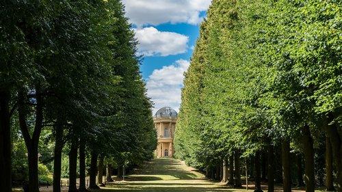 landscape  avenue  tree lined avenue