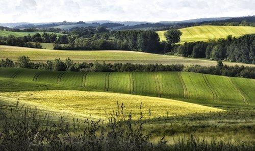 landscape  bakony  heights
