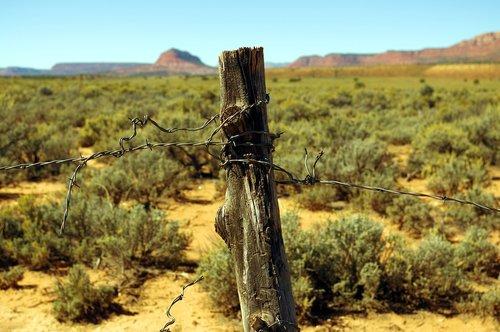 landscape  desert  sand