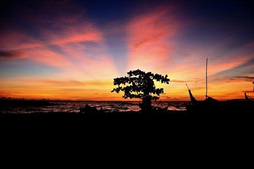 landscape silhouette sunset