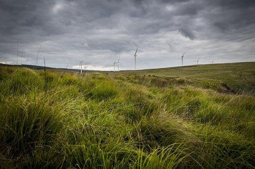 landscape  wind farm  wind turbine