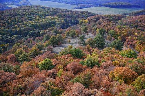 landscape  autumn  autumn landscape
