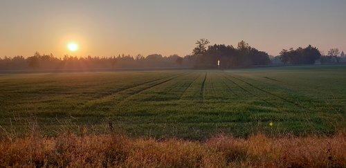 landscape  east  field