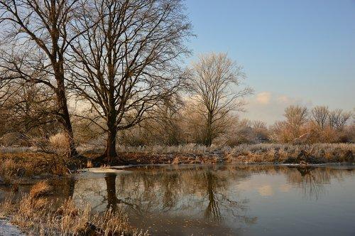 landscape  winter  wintry