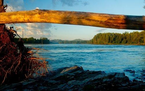 landscape  katun river  nature