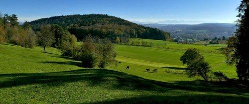landscape  agriculture  nature