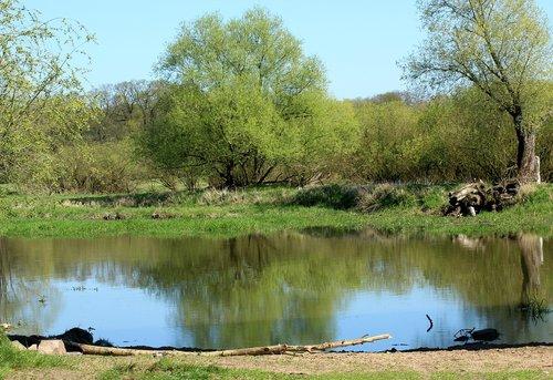 landscape  spring  spring landscape