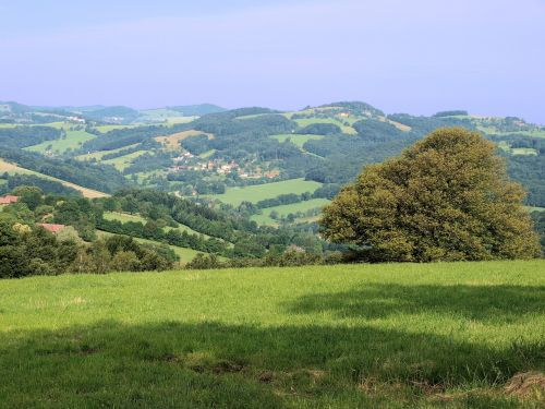 kraštovaizdis,pievos,žemės ūkio paskirties žemė,kaimas,laukai,gamta,kaimas,vasara,žalias,žolė,Šalis,lauke,medžiai,kaimas,idiliškas,scena,vaizdas,auginami,Europa,kalvos