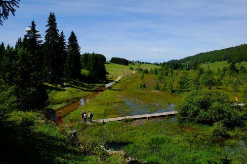 landscape jura lake