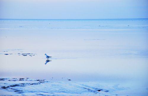 landscape sea peaceful