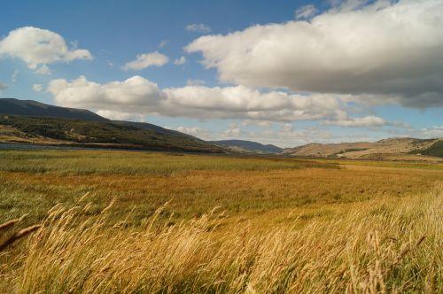 landscape patagonia chilean patagonia