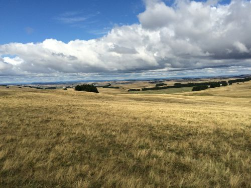 landscape fields aubrac