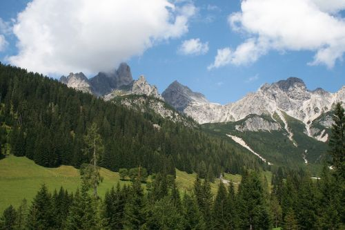 austria,pušis,kalnas,kalnas,kraštovaizdis,kalnai,miškas