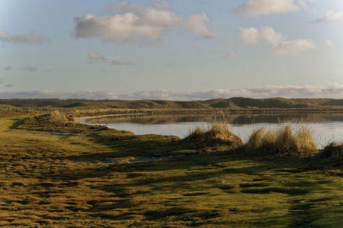 Landscape And Shoreline
