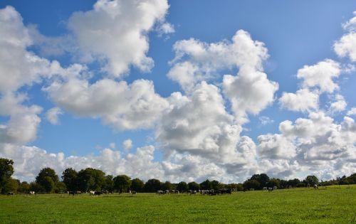 landscape campaign panorama campaign prairie
