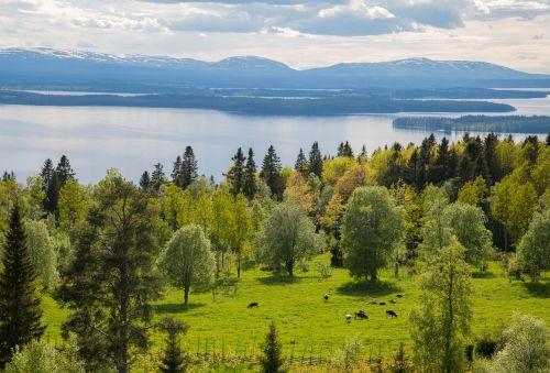landscapes mountain sweden