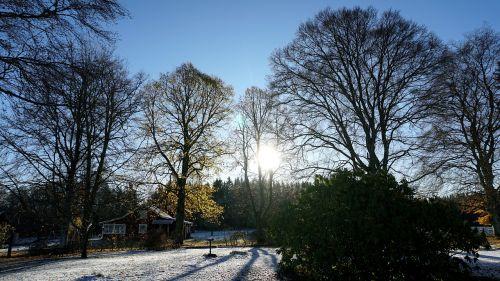 landscapes sunny snow