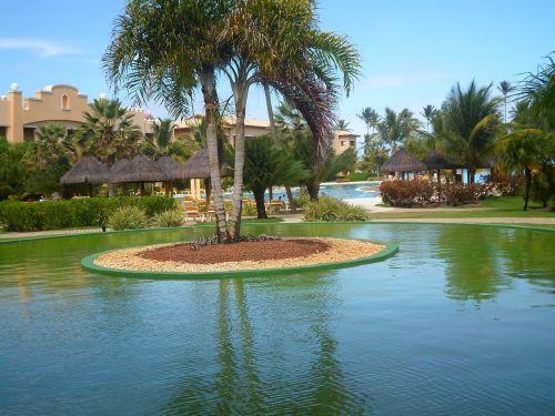 landscaping garden beach