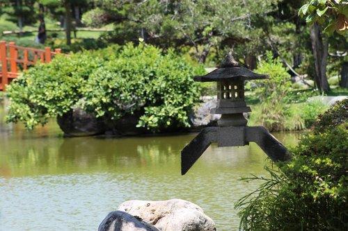 landscaping  japanese garden  summer