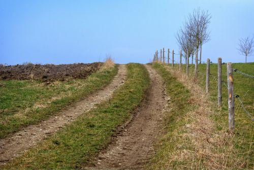 lane away nature