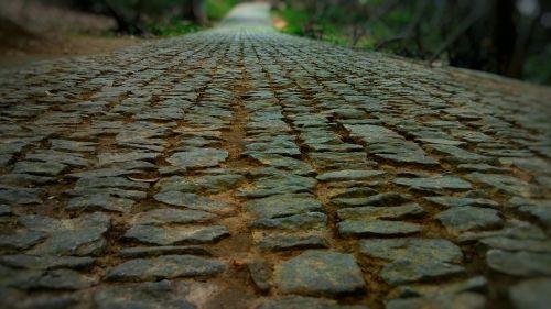 lane road