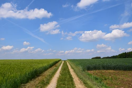 lane agriculture field