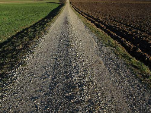 lane dirt track evening
