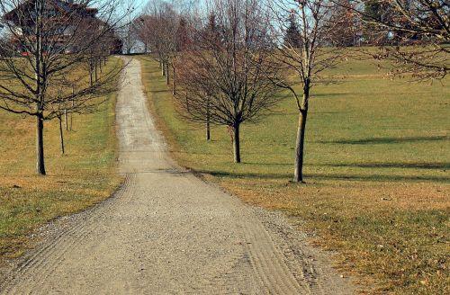 juostos,kelias,toli,purvo kelias,Alpių kelias,pieva,kalnų takas,valdymas,gamtos takas,gamta,komercinis kelias