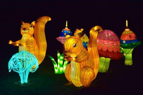 lanterns chinese night