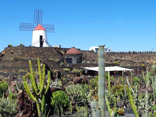 lanzarote cactus garden mill