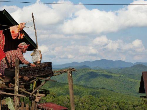 laos farmer's wife nature