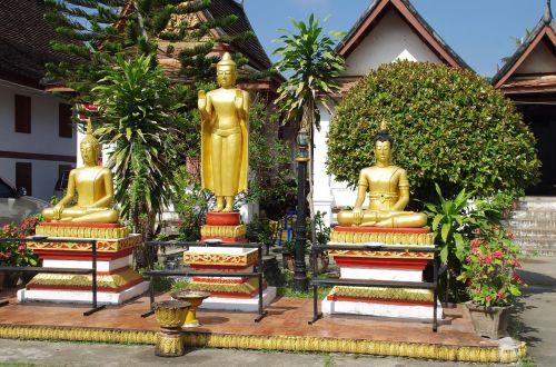 laosas,luang-parbang,šventykla,Budos,statulos,malda,religija,budizmas,senoji šventykla,sodas,šypsena,šventykla