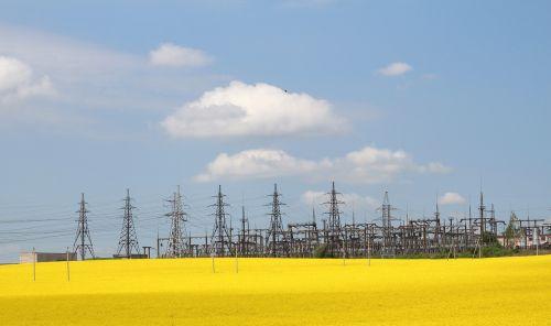 lap electricity rape