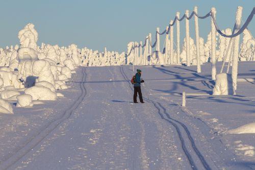 lapland winter snow